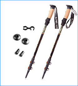 Alpine Summit Trekking Poles