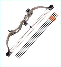 fastest compound bow