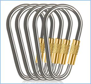 d-fanatic titanium carabiner