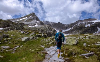 The 8 Best Trekking Poles to Support You | 2019