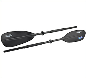 best shoreline marine kayak paddle