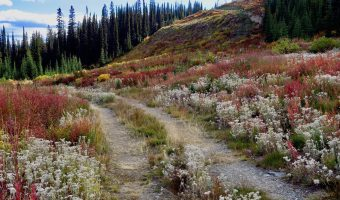 why fall is the best season for hiking