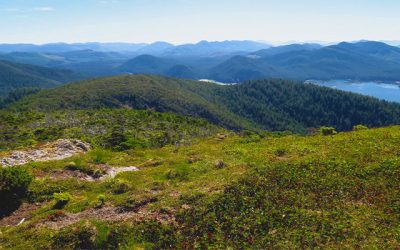 Why I Did the Cape Scott Trail Instead of the West Coast Trail