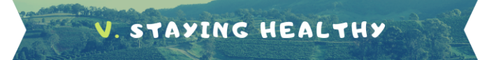 staying healthy banner