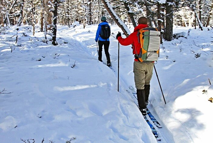 two skiers cross country sking snowy trail