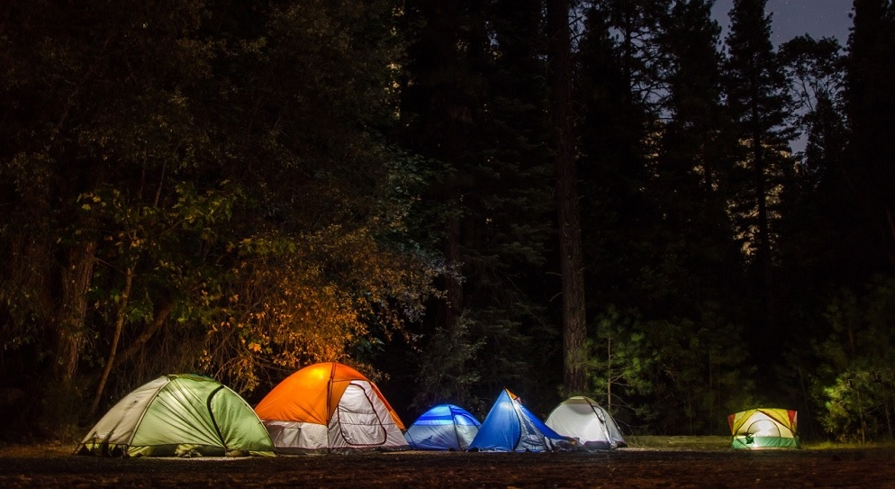 Lit camping tents in the forest