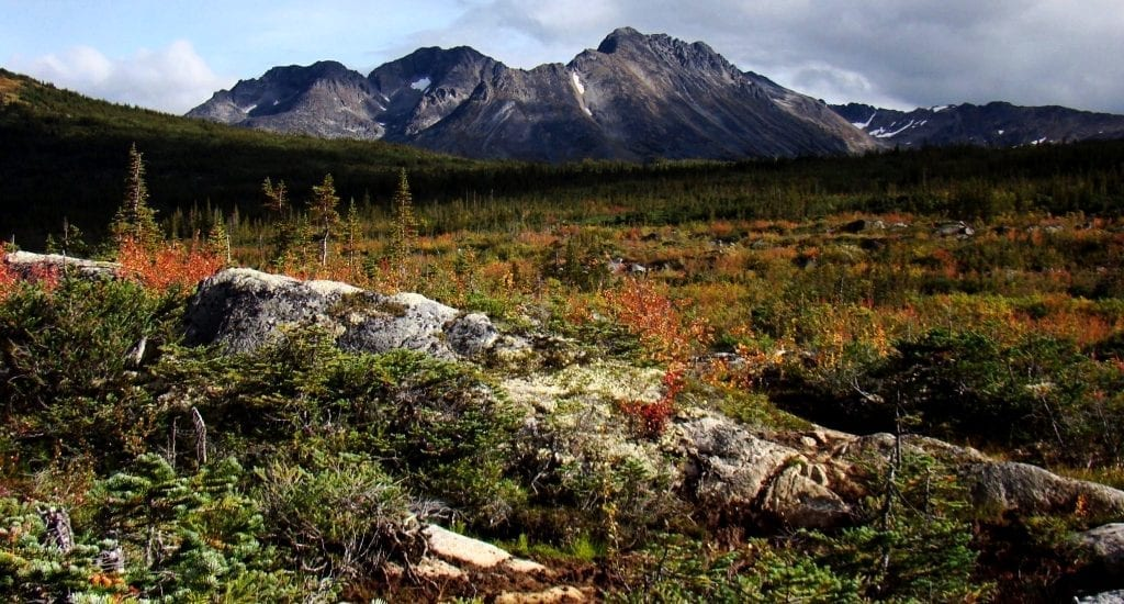 plains and mountains in northern british columbia