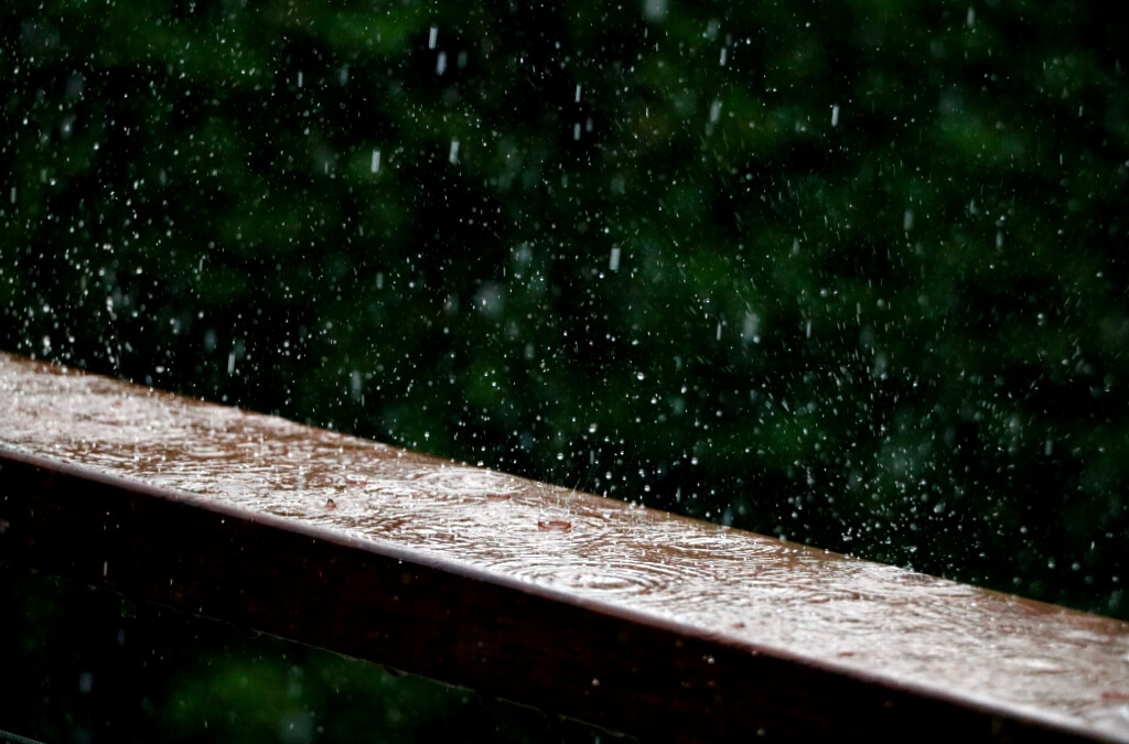 The 9 Best Rain Gauges You Can Use | 2019