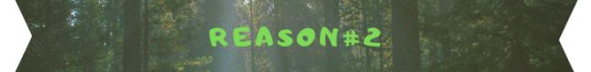 reason 2 banner