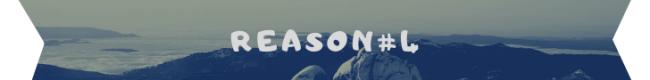 reason 4 banner