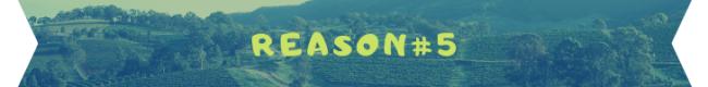 reason 5 banner