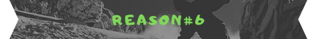 reason 6 banner