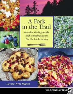 a fork in the trail book cover