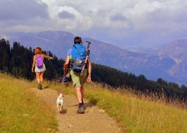 two people with a dog on a hiking trail in the mountains