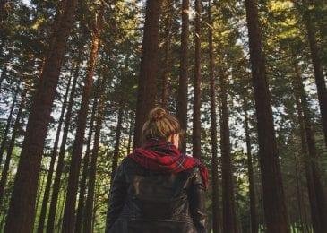 woman fall trees fall jackets and headscarf