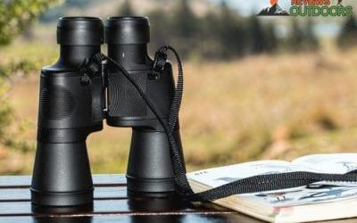 The 9 Best Binoculars for the Money for Various Activities   2019