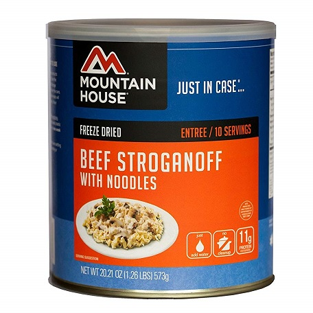 Beef Stroganoff with Noodles